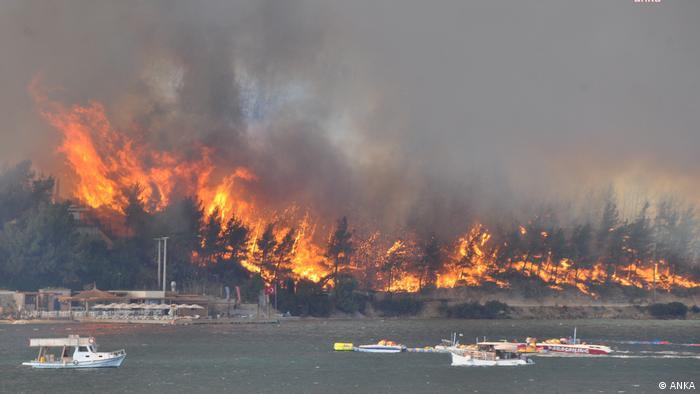 WILDFIRES IN TURKEY 6